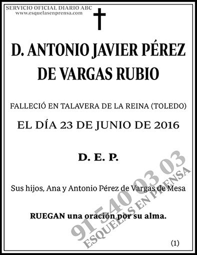 Antonio Javier Pérez de Vargas Rubio